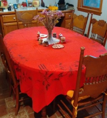 Dec 2015_Hazels tablecloth_mid 60s.jpg