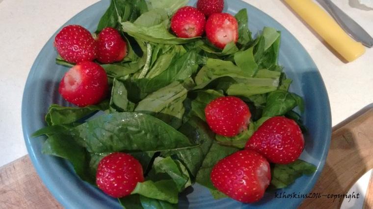egg salad w strawberries_May 2016 (4)