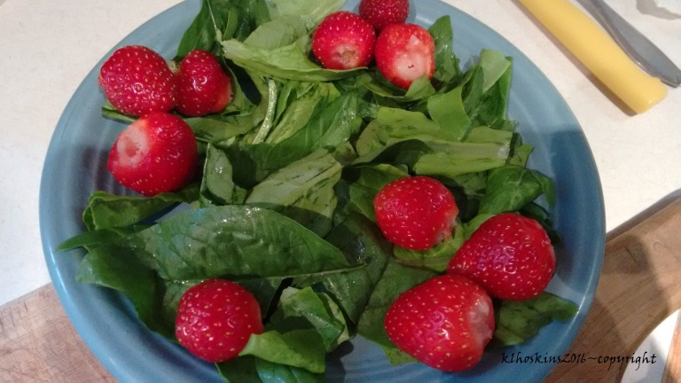 egg salad w strawberries_May 2016 (4)