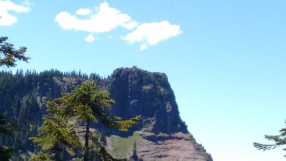 bachelor mt trail_june 2016 (91)