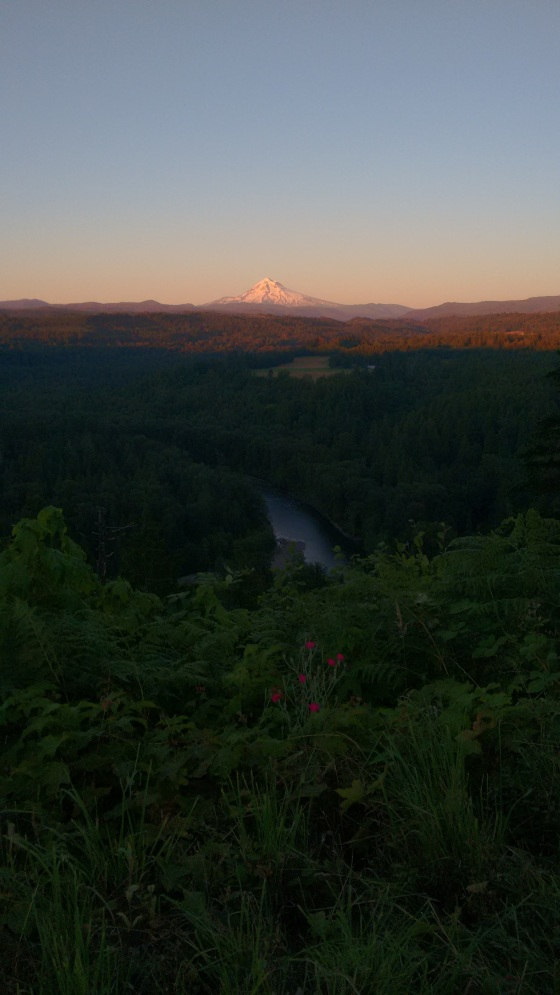 mt hood from sandy lookout_june 2016 (13)