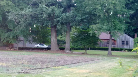 the old house_june 2016 (3)
