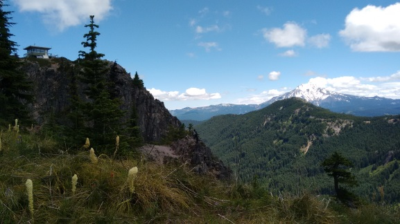 coffin mt trail_july 2016 (55)