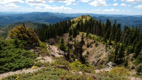 coffin mt trail_july 2016 (73)