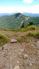 coffin mt trail_july 2016 (81)