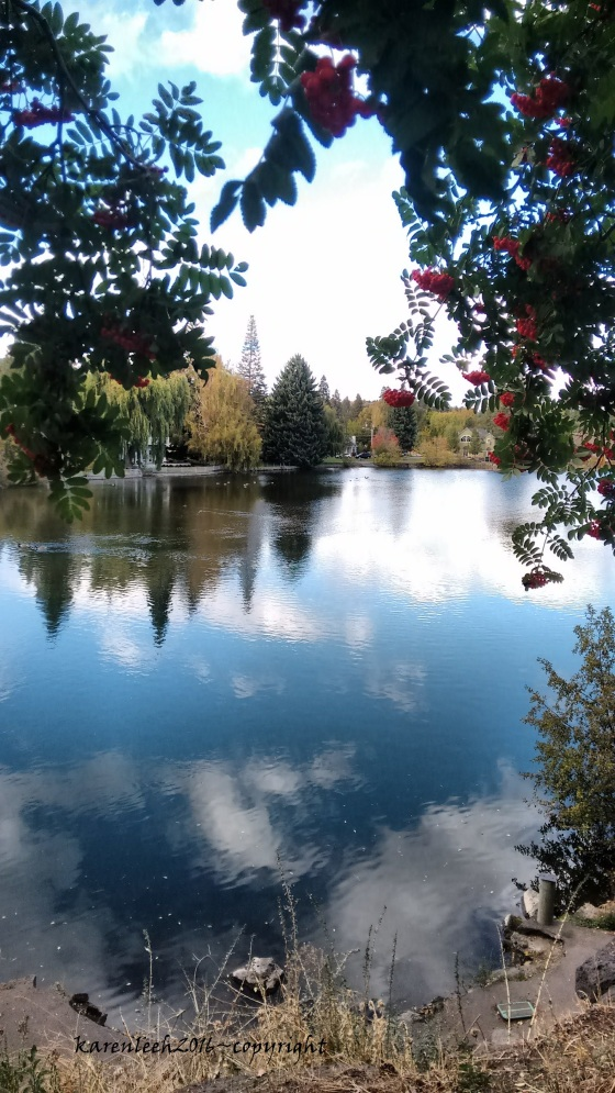 along-the-river-in-bend_oct-2016-28