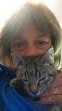 cats_sept-2016-1