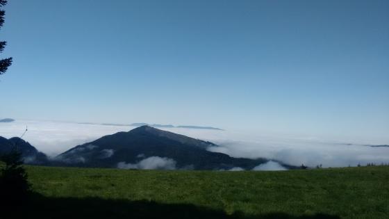 Marys Peak_1 (2)