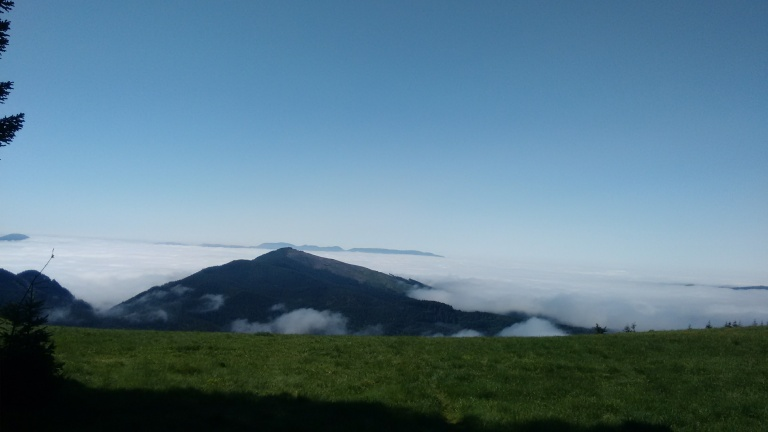 Marys Peak_1 (2)
