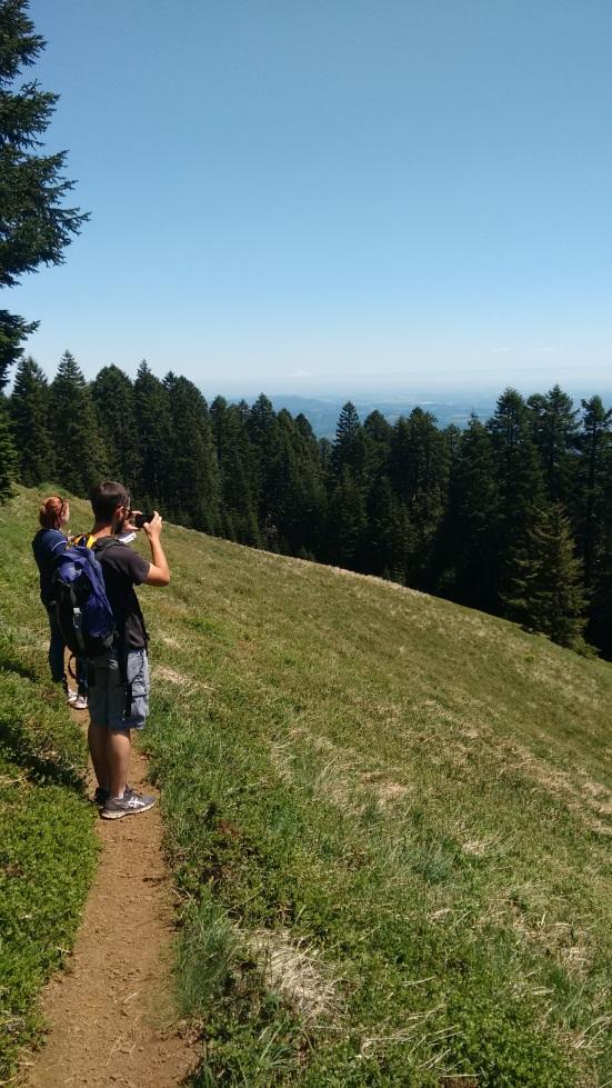 Marys Peak_2 (1)