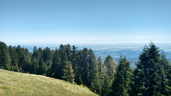 Marys Peak_2 (8)