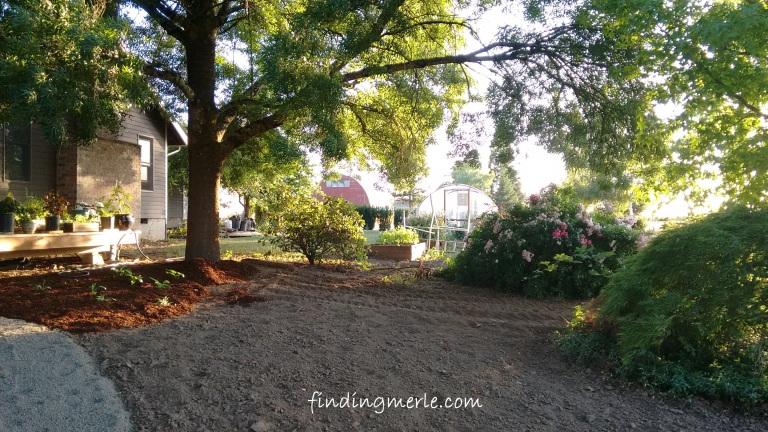 garden remodel