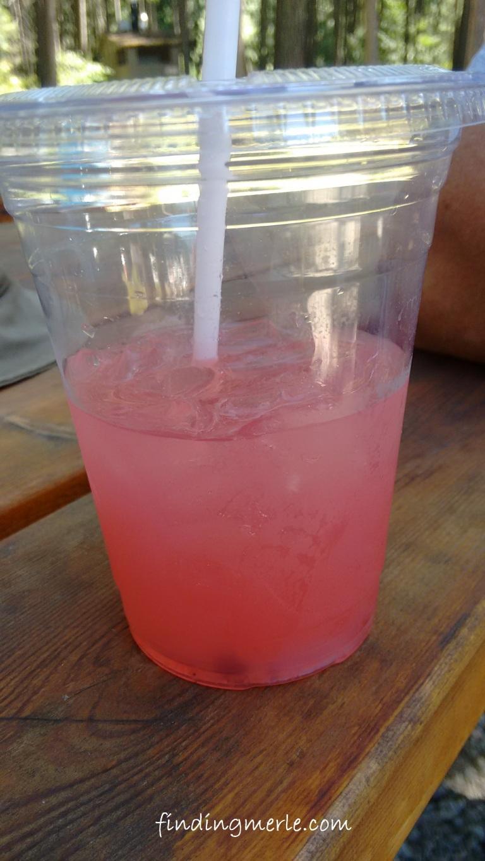 Kootenai Falls_huckleberry lemonade