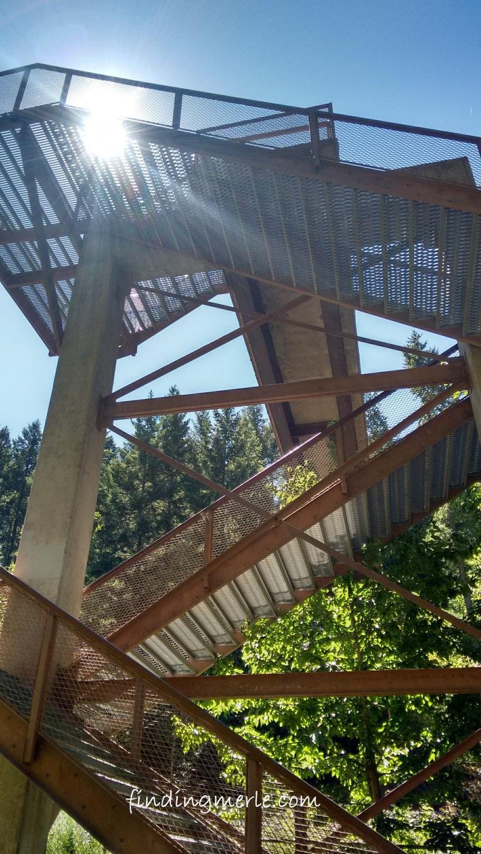 Kootenai River falls_swinging bridge