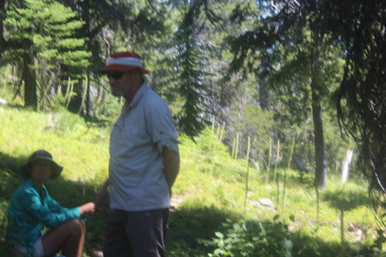 Mt Henry hike_July 29 2017 (22)