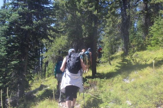 Mt Henry hike_July 29 2017 (24)