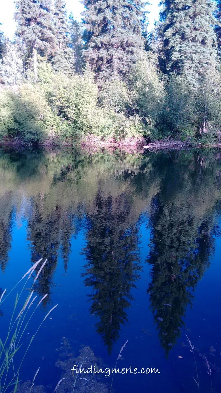 Yaak River Lodge_Yaak MT (2)