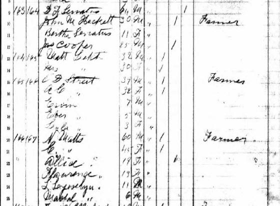 servatius_bertha_DF_Matts family_1885 kansas