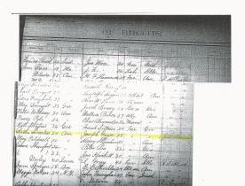 W Herbert Geier_baby register of births_Ottawa KS_7 April 1892_page 2